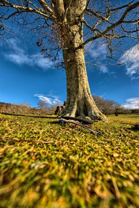 Fotografía de Xann Torres Makazaga, para #tuhilorojo